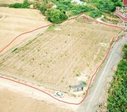 2.2 triệu/m2 lô góc mặt tiền 8000m2 đường Cát Hàn đất Tân An huyện Vĩnh Cữu